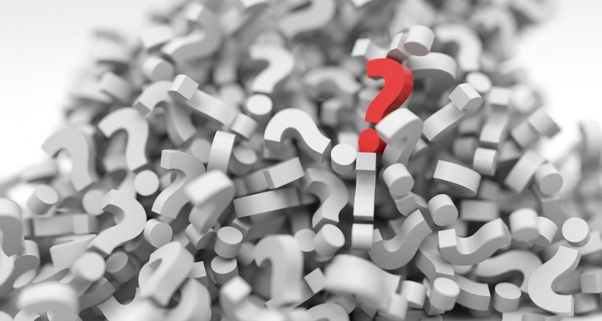 ¿Qué es lo más importante al abrir una web nicho?